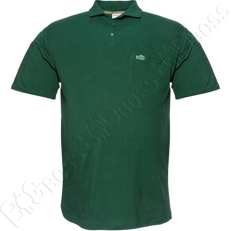 Поло лакоста зелёного цвета Big Team 0