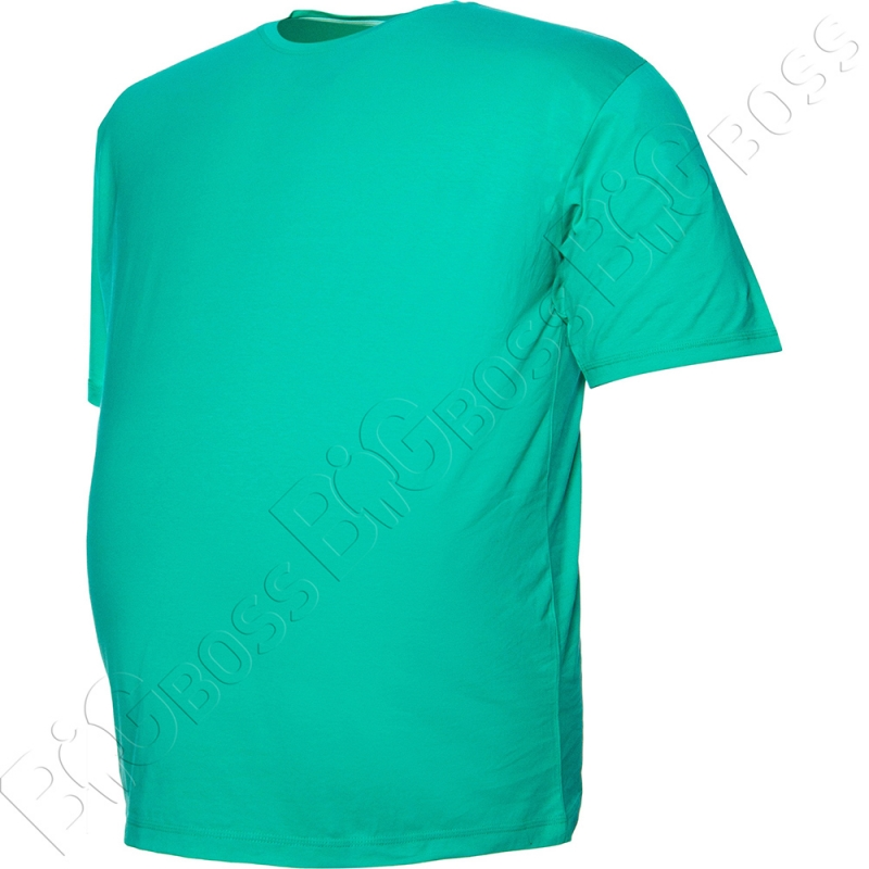 Футболка однотонная цвета ментол Big Team 2