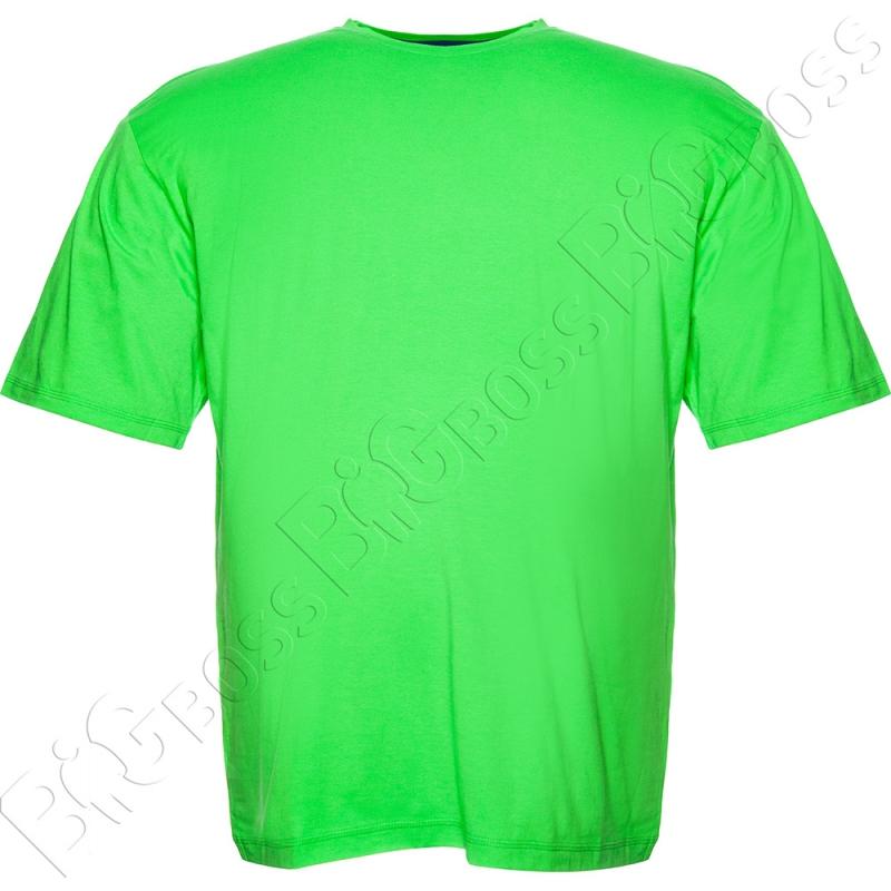 Футболка однотонная салатового цвета Big Team 0