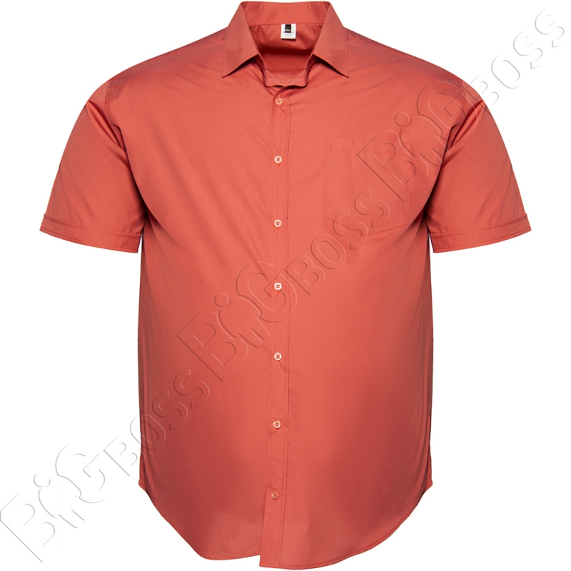 Рубашка короткий рукав цвета терракот Big Team 0