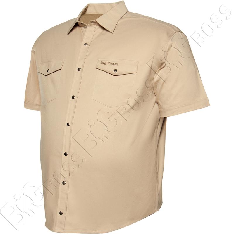 Коттоновая рубашка на кнопках Big Team 2