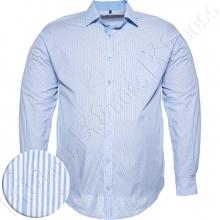 Рубашка в мелкую полоску Big Team