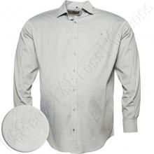 Рубашка в мелкую точку Big Team