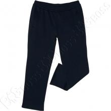 Тёплые (зимние) спортивные штаны тёмно синего цвета Big Team