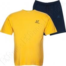 Костюм футболка + шорты Big Team