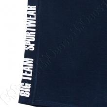 Костюм футболка + шорты Big Team 5