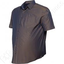 Рубашка короткий рукав Big Team 2
