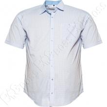 Рубашка короткий рукав в декор голубого оттенка Big Team
