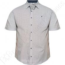 Рубашка короткий рукав в декор синего оттенка Big Team
